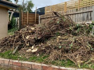 Yard cleanup. Waste removal. Rubbish removed from yard