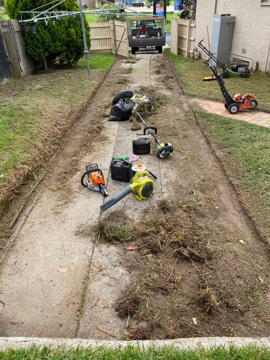 Yard cleanup Mornington Rubbish removal waste disposal